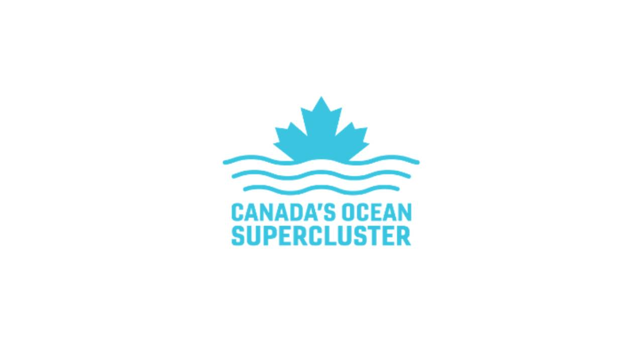 Canada's Ocean Supercluster welcomes technology leadership program manager